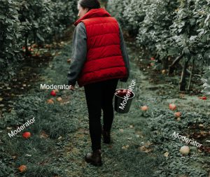 woman-walking-through-orchard-looking-for-fruit