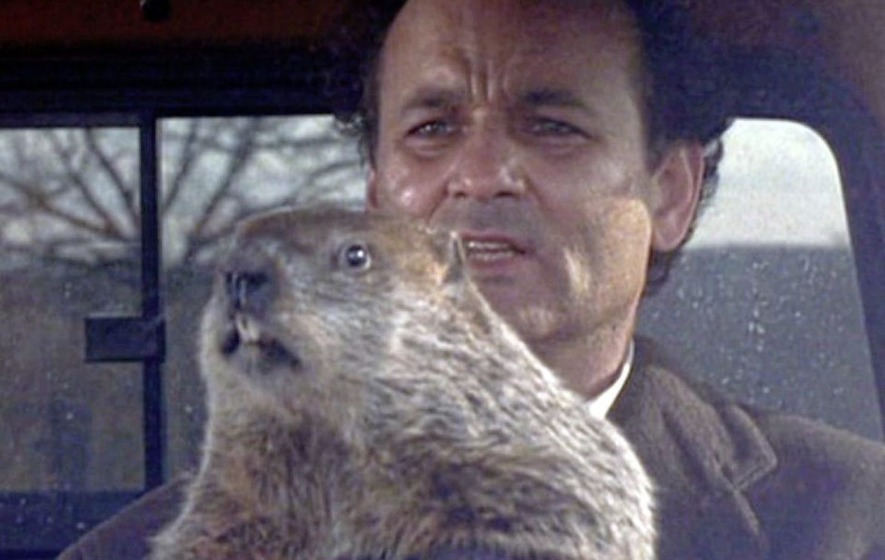 "Bill Murray and A groundhog from the movie ""ground hog day"""